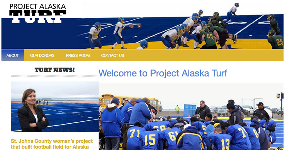 Project Alaska Turf